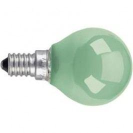 Žárovka OSRAM 4008321545800, E14, 230 V, 11 W, zelená, 1 ks