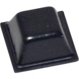 Přístrojová nožička samolepicí TOOLCRAFT PD2126SW, (D x Š x V) 12,7 x 12,7 x 5,8 mm